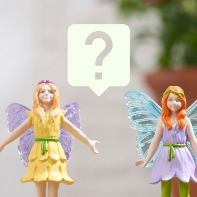My Fairy Garden Quiz