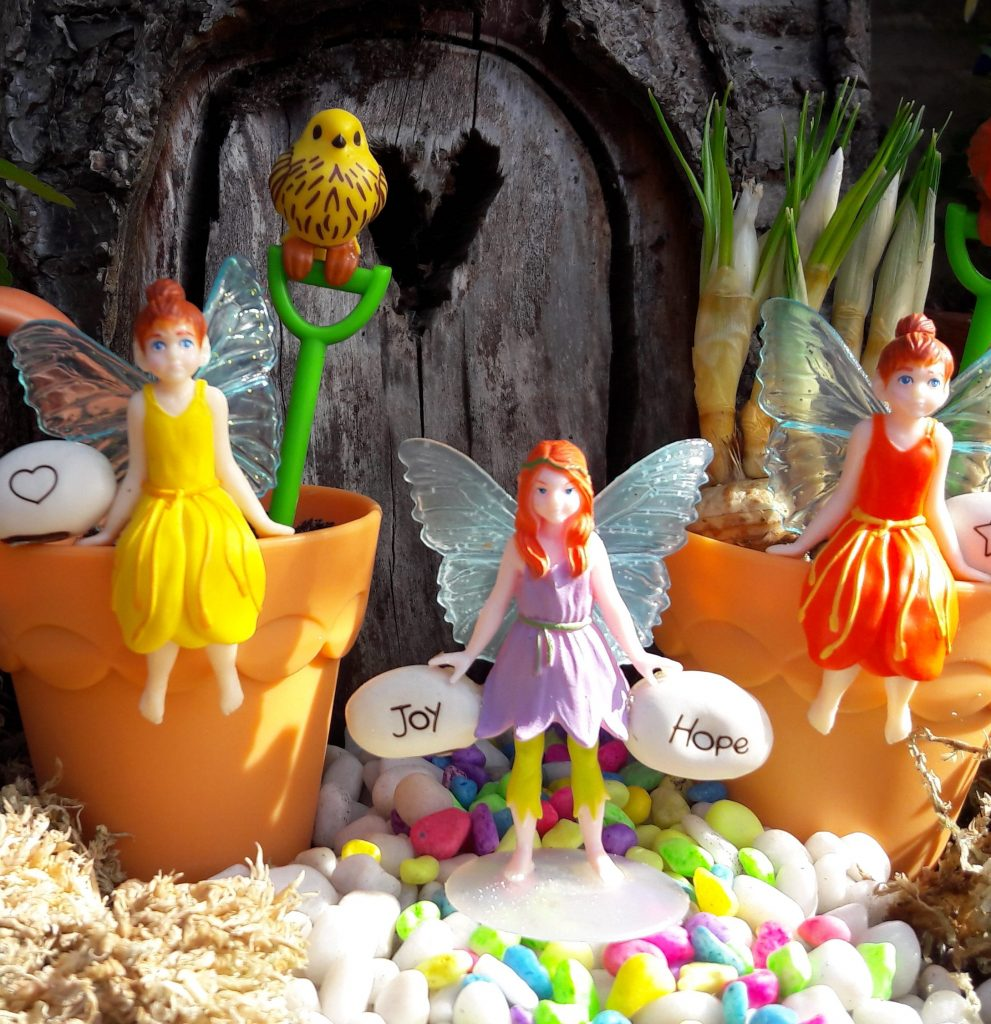 my fairy garden magic bean pot twins